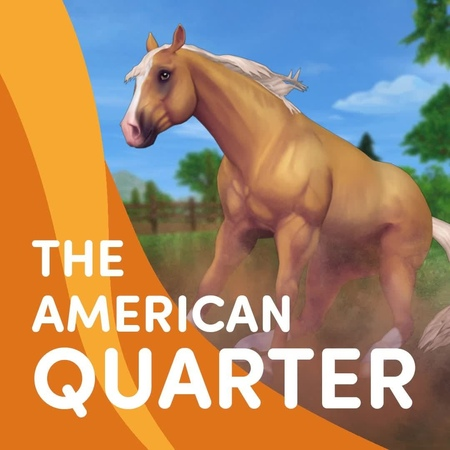 Star Stable on Instagram Who's ready for some AmericanQuarterForce to come sliding into your home stable 🙋😍🐎💨 The new generation 3 American Quarter Horse will be…""