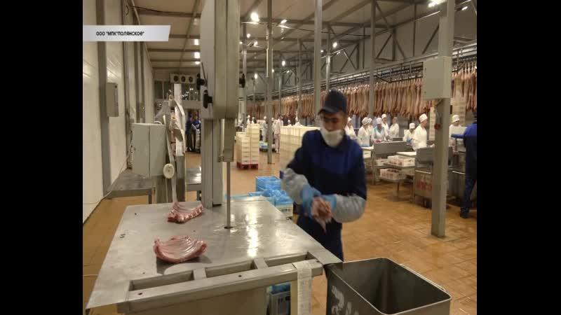 Заместитель губернатора проинспектировал работу мясоперерабатывающего комплекса Полянское