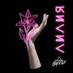 catchers groove - Лилия