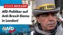 AfD Politiker auf Anti Brexit Demo in London Roger Beckamp AfD