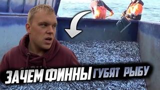 Наш остров: Какой биотуалет на острове? Почему финны уничтожают рыбу?!