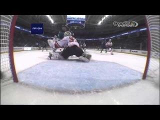 Calgary Flames Vs San Jose Sharks. January 20th 2014. (HD)