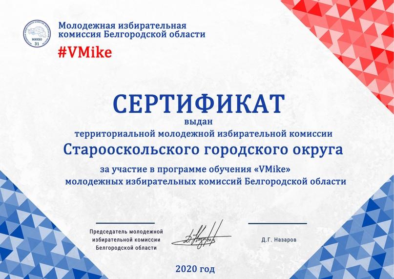 Итоги программы обучения молодежных избирательных комиссий Белгородской области «VMike», изображение №21