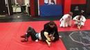 Brazilian Jiu Jitsu Техника в маунте Академия ММА Гладиатор