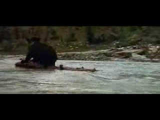 The Bear Film by Jean Jacques Annaud