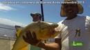 PESCA de Dorados en costanera de Buenos Aires. Como Pescar Dorados