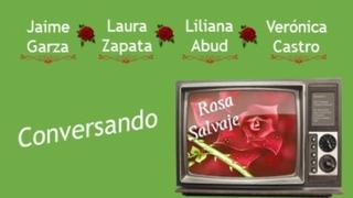 Plática | Rosa Salvaje