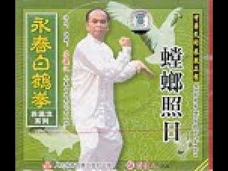 Praying Mantis Facing Sun (2) / Wing Chun White Crane Fist by Su, Ying Han