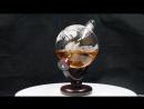 850ml globe decanter