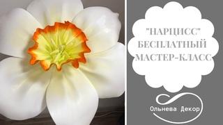 """БЕСПЛАТНЫЙ МАСТЕР-КЛАСС """"НАРЦИСС"""" от Ольги Ольневой"""