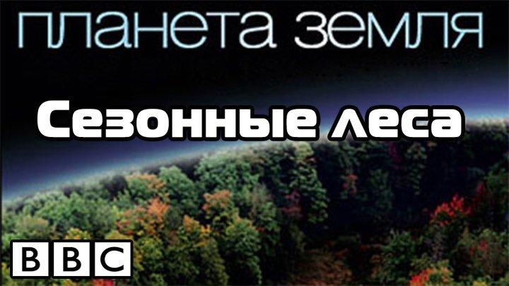 BBC Планета Земля Сезонные леса 2006 720HD