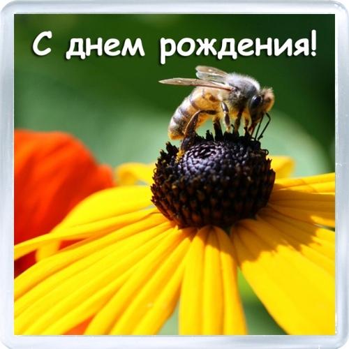 Поздравление для пчеловодов