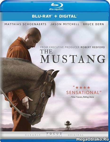 Мустанг / The Mustang (2019/BDRip/HDRip)