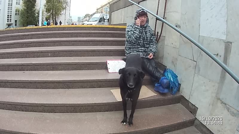 Дама с собачкой Эмма Астахова и БОМЖ с пайкой из Макдака