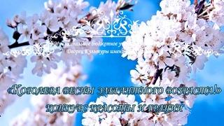 Конкурс красоты и грации «Королева весны элегантного возраста!»  года.