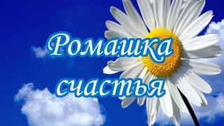 Литературно-познавательная программа «Ромашка счастья»