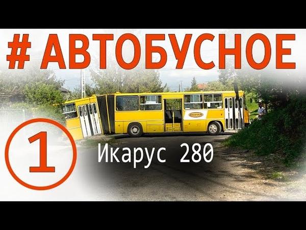 Автобус Икарус 280 Все о легендарных гармошках Покатушки история модификации эксклюзивы