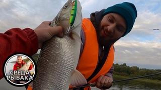 Рыбалка на Оке | Ловля СУДАКА, ЩУКИ и ЖЕРЕХА на спиннинг троллингом | Русская рыбалка