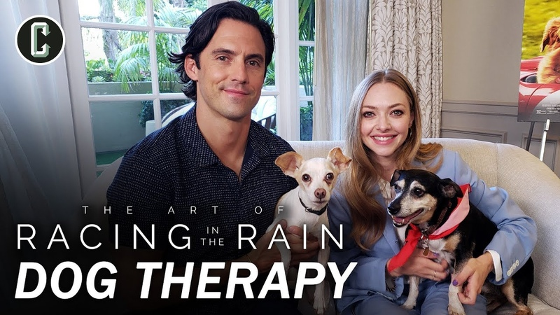 Milo Ventimiglia Amanda Seyfried Play with Rescue Dogs The Art of Racing in the Rain