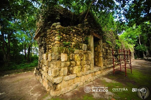 В Мексике обнаружили огромный дворец майя