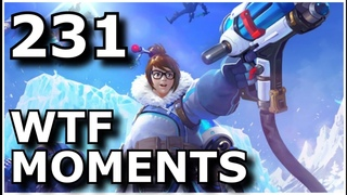 Heroes of the Storm - Epic and Funny WTF Moments #231