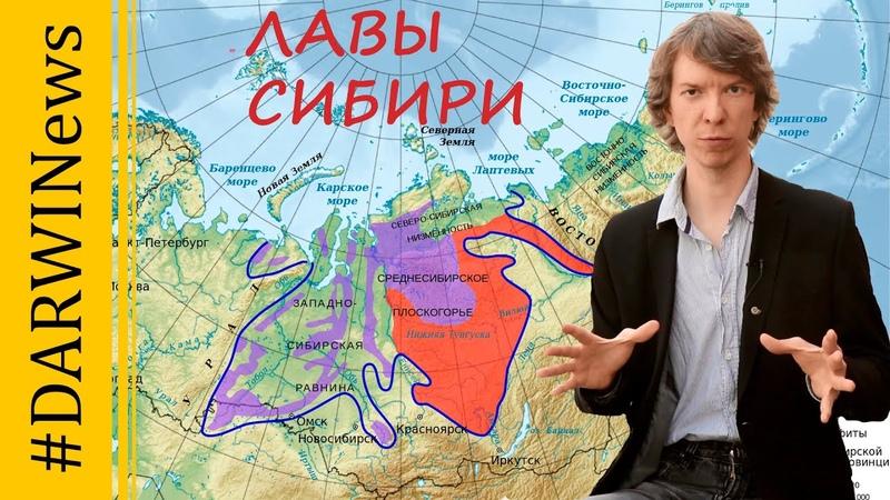 Великое пермское вымирание спровоцировали извержения в Сибири Ярослав Попов DARWINews