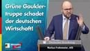 Grüne Gauklertruppe schadet der deutschen Wirtschaft Markus Frohnmaier AfD Fraktion