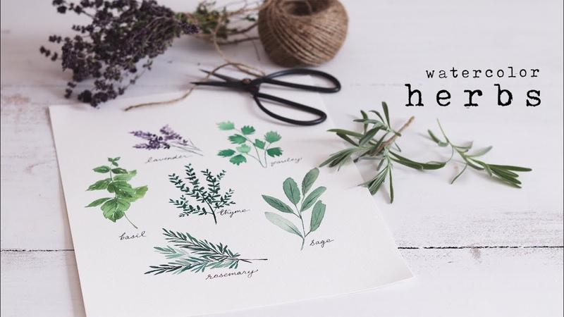 How To Paint Watercolor Herbs Simple Beginner Tutorial