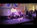 Дрессированные собаки на детский праздник. Интерактивное шоу собачек на праздник. Дог-шоу