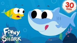 Baby Shark   + More Kids Songs   Finny The Shark