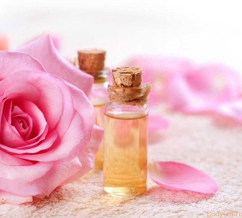 Розы полезны для Благодати, изображение №2