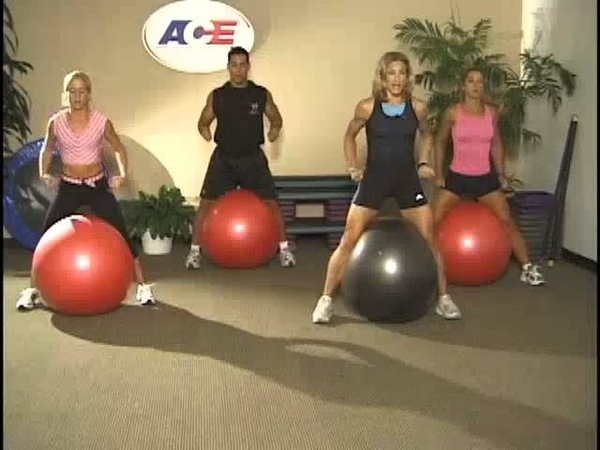 ACE's Guide to Stability Ball Training by Joan Wenson