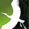 Аутсорсинг Информационных Систем и Технологий