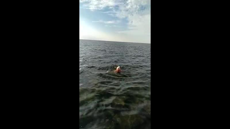 22 октября Анапа чёрное море