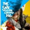 Edward Sol, The Cats' Orchestra, Илья Белоруков