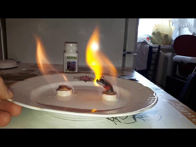 Сравнительный эксперимент Nutrilite кальций магний и аптечный глюконат кальция