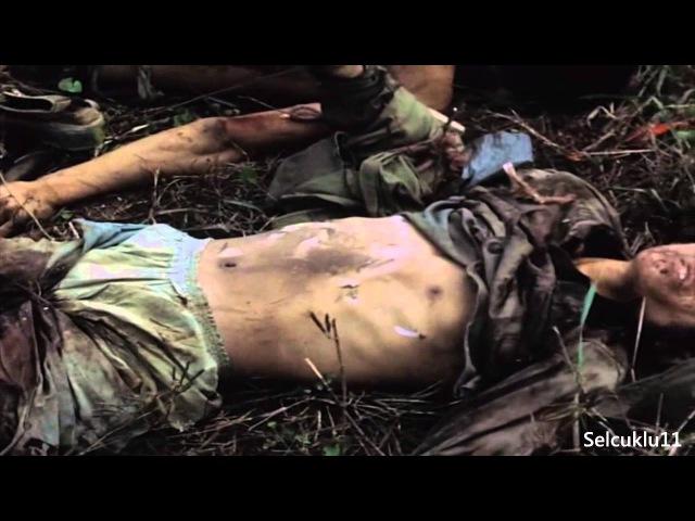 Война во Вьетнаме нарезка редких кадров
