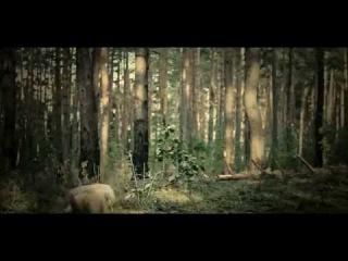 owncean - Beneath EP [video journal, pt. 0]