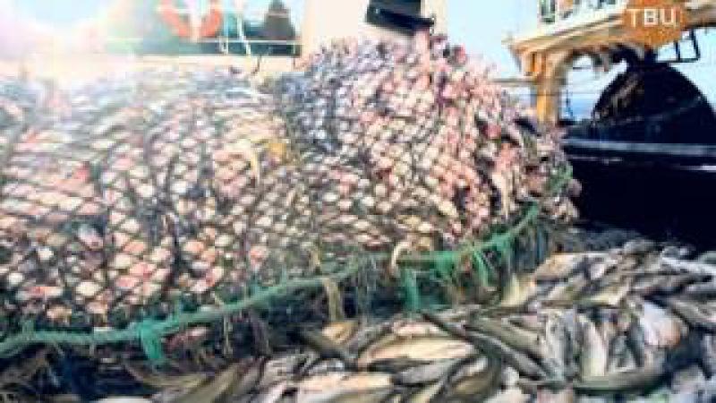 документальный Добыча. Рыба 25/12/2014