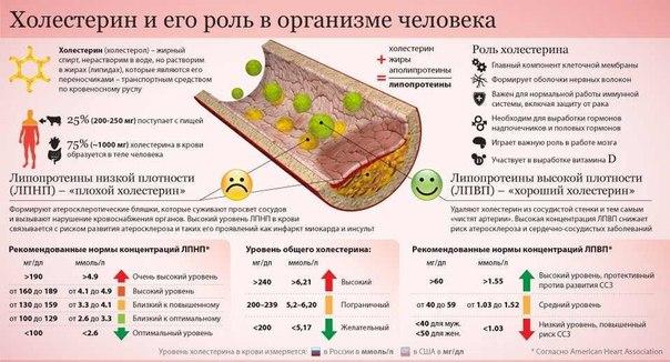 Холестериновая диета форум