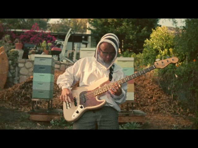 Flea Introduces the Fender Signature Flea Bass | Artist Signature Series | Fender