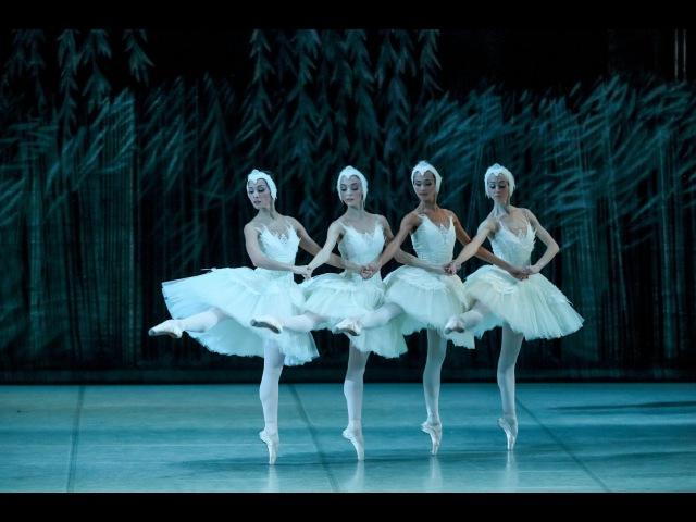 Белый акт Лебединое озеро Swan Lake White act