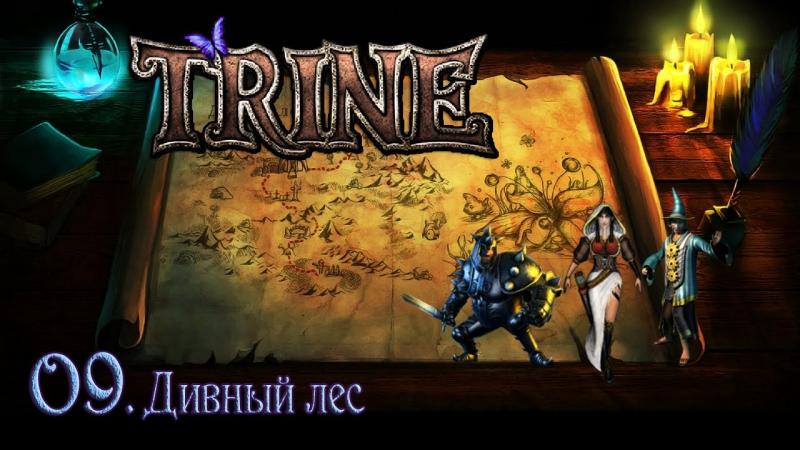 TRINE 09. Дивный лес