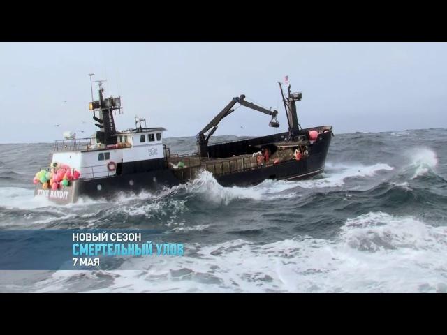 Как ловят крабов Смертельный улов Discovery Channel