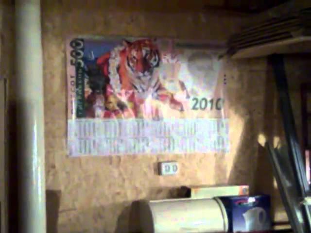 Репортаж из гаража