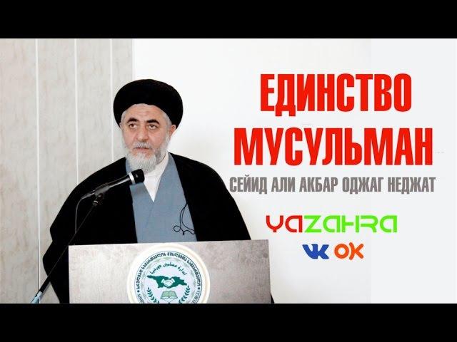 Единство Мусульман Сейид Али Акбар Оджаг Неджат