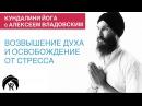 Кундалини йога с Алексеем Владовским: Возвышение духа и освобождение от стресса