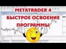 Настройка форекс терминала MetaTrader4 Быстрое знакомство с программой
