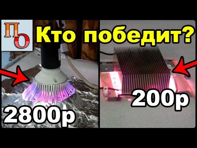 LED Фитолампа (биколор) против дешёвого диода с Али (full spectrum). Тест.
