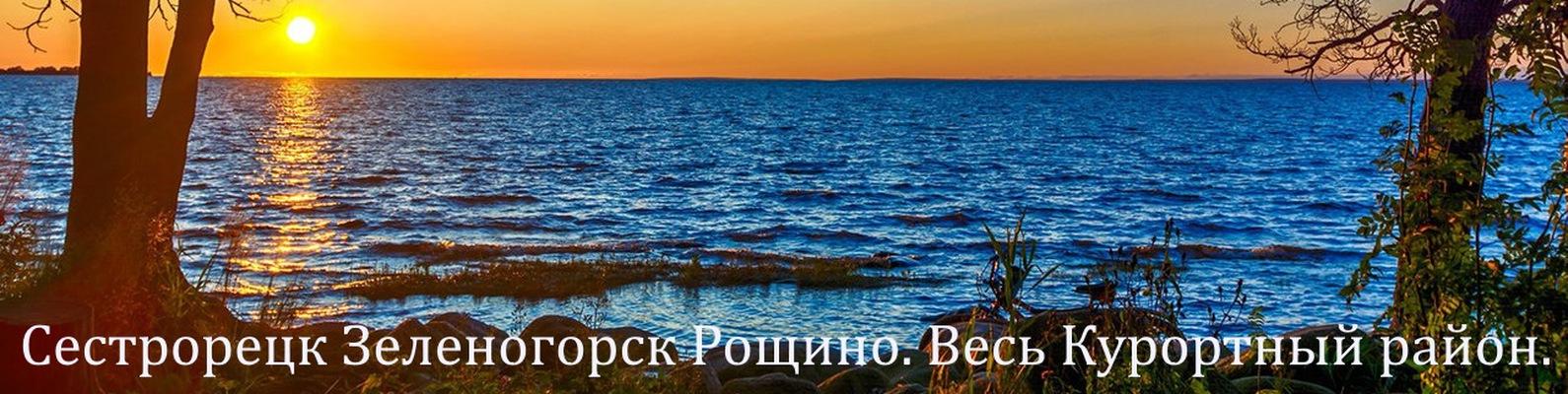 аренда авто без водителя спб приморский район